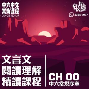 立方教育 - 中文補習中六常規課程